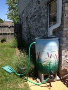 Rain Barrel Workshop - 5:30 pm @ Botanical Garden of the Ozarks | Fayetteville | Arkansas | United States