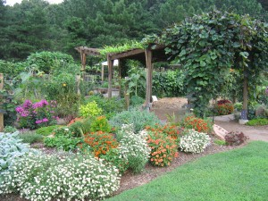 Sponsorship Opportunities available at the Botanical Garden of the Ozarks
