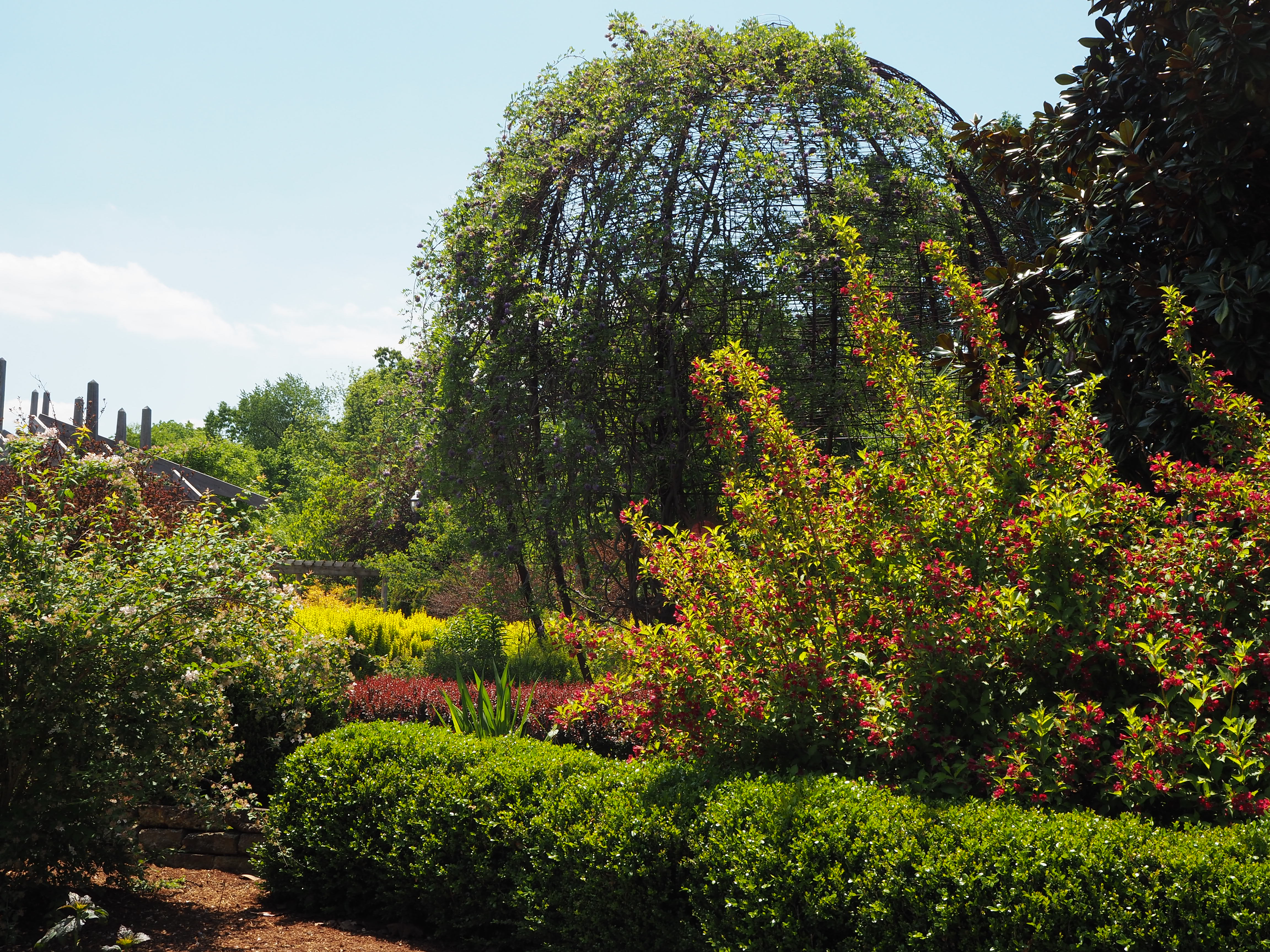 tyson tuesday garden education botanical garden of the ozarks